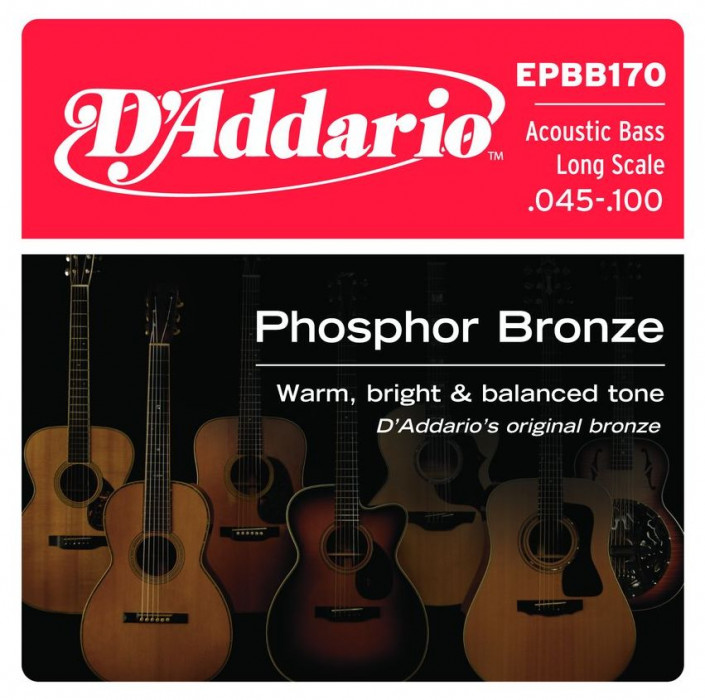 D'ADDARIO EPBB170 Phosphor Bronze Regular Light - .045 - .100