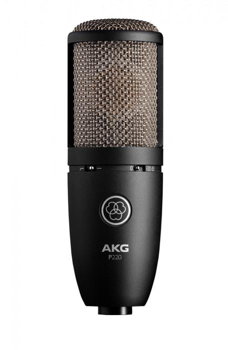 AKG Perception P 220
