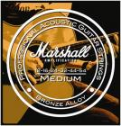 MARSHALL STR1254, struny pro akustickou kytaru 012 - 054
