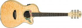 LUNA GUITARS Fauna Hummingbird AE