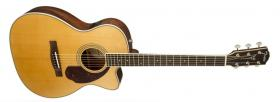 FENDER PM-3CE Standard Triple-0 Natural